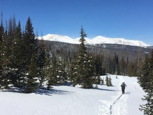 two skiers all alone on a trail near Cameron Pass