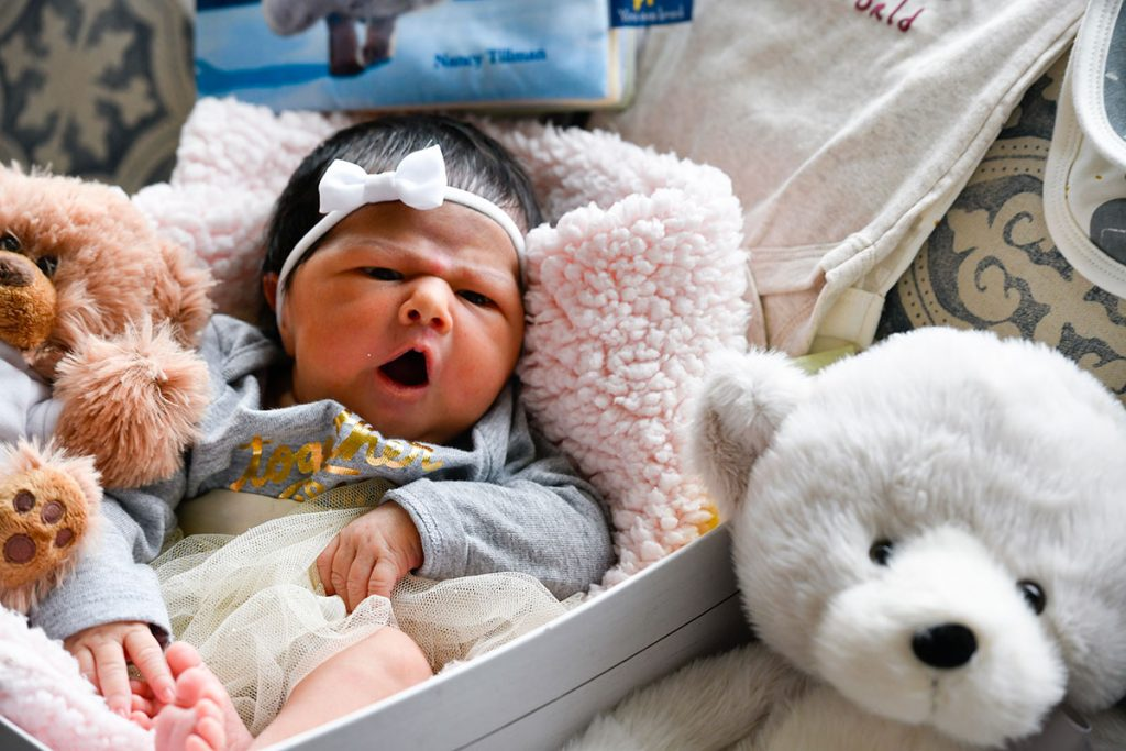 A three-day-old baby sites on a pink blanket with stuffed animals surrounding her.