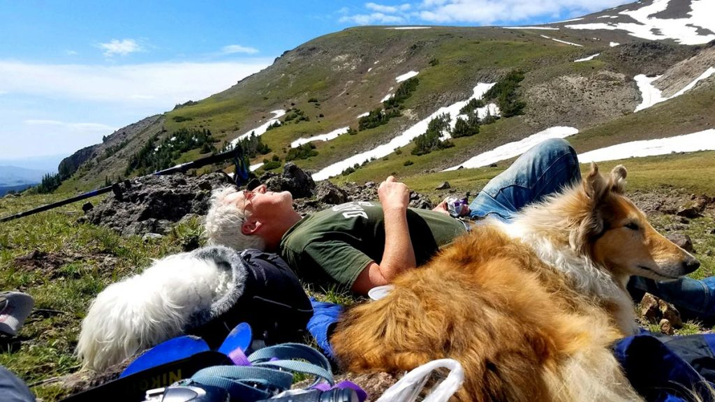 Joe Boardman lays on his back in the Wyoming mountains with his collie, Stella, and his Havanese, Tess.