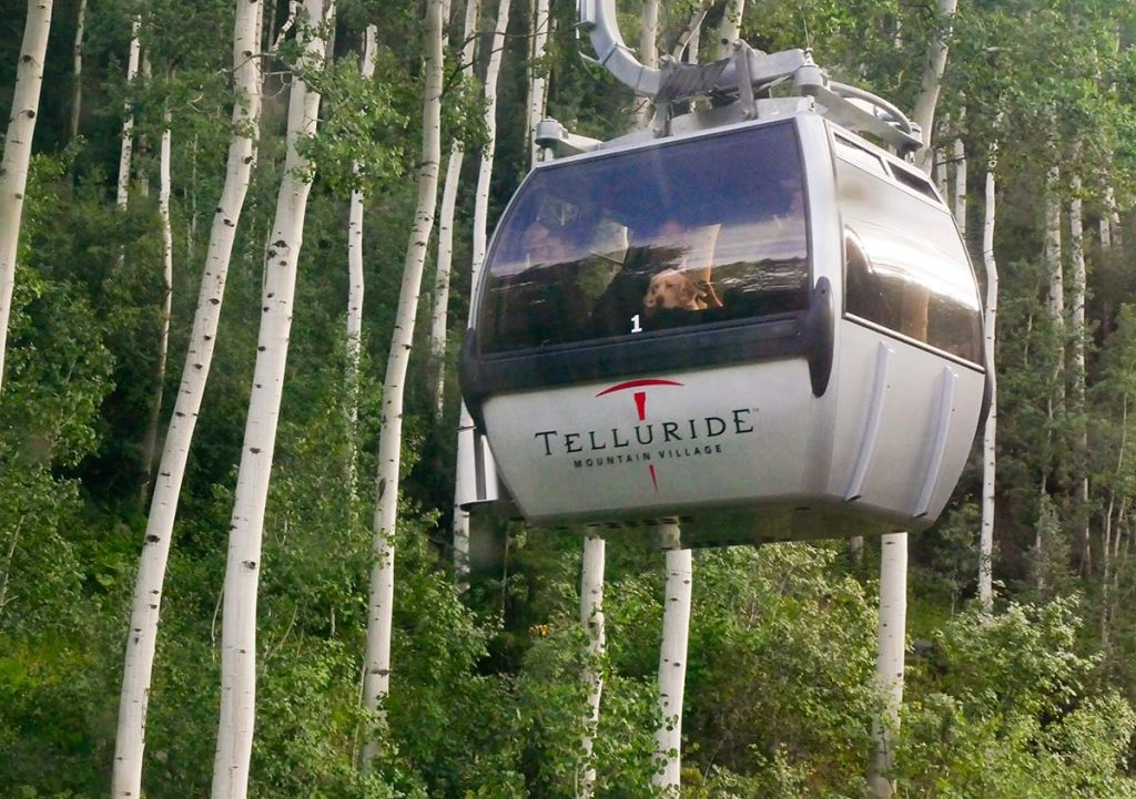 free gondolas in Colorado include the one in Telluride. Here you see a gondola car with a dog peeking out the window. In the background are aspen trees on a green ski slope in the summer.