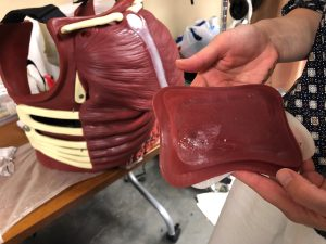 A silicone blood bladder is displayed in front of a cut suit chest cavity which makes trauma training more realistic..