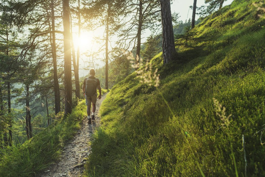 A man walks on a trail through the woods.