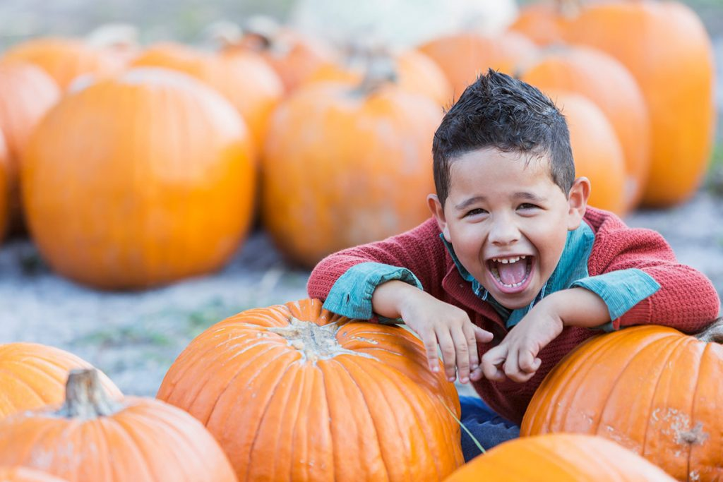 young boy leans on pumpkins in a pumpkin patch. Now is a great time to pick your own pumpkins