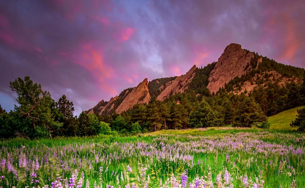 A view of the Flatirons in Boulder with a pink sky. If you're looking for fun free things to do in Boulder, Chautauqua Park is a great place.