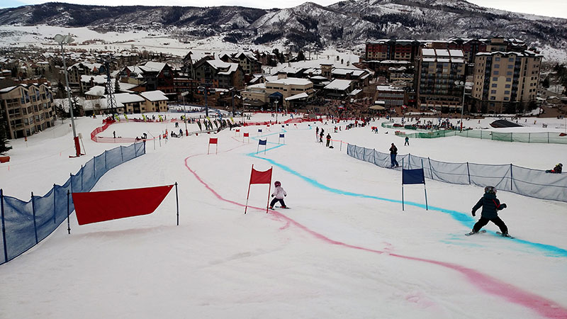 Two young skiers go down a race course in this photo.