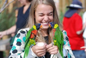 a girl holds two lorikeets at the Denver Zoo