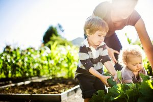 kids gardening with their parent.