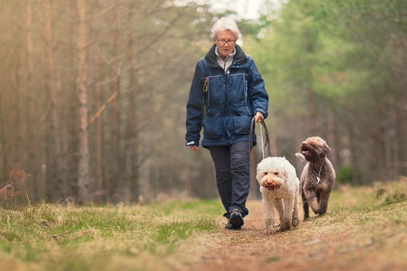 Woman walks her dog, which is OK for pet owners to do as long as they don't have COVID-19.