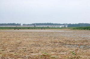 climate-variability-soils
