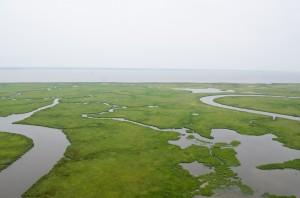 Delaware Bay aerial photo