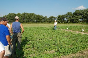 Dr. Ron Ritter, weed specialist emeritus at University of Maryland, led one tour that demonstrated the different modes of actions applied at the University of Delaware research plots