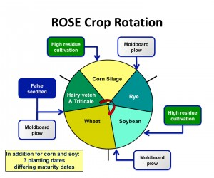 ROSE - crop rotation