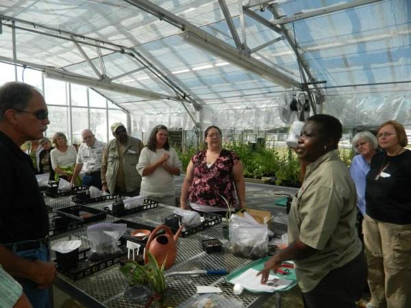 Classroom inside a greenhouse