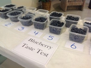 Blueberries on dishes on table