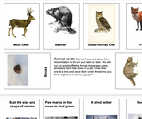 Ogden Nature Center: Animal Autograph Playing Cards