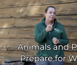 Ogden Nature Center: Animals and Plants Prepare for Winter Virtual Field Trip