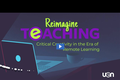 Reimagine Teaching Webinar Series: Critical Creativity in the Era of Remote Learning