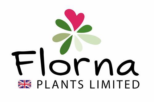 Florna Plants Limited