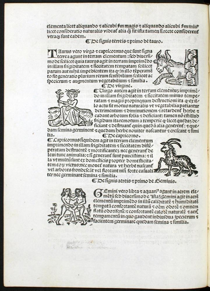 Image of Bonatti-1491-00b3v