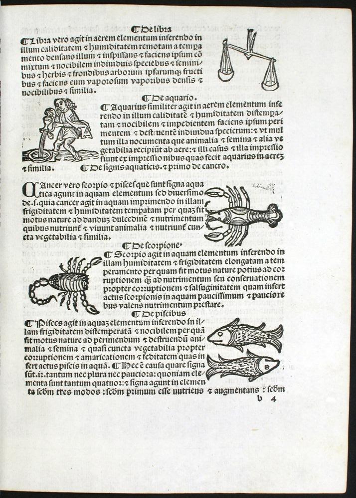 Image of Bonatti-1491-00b4r