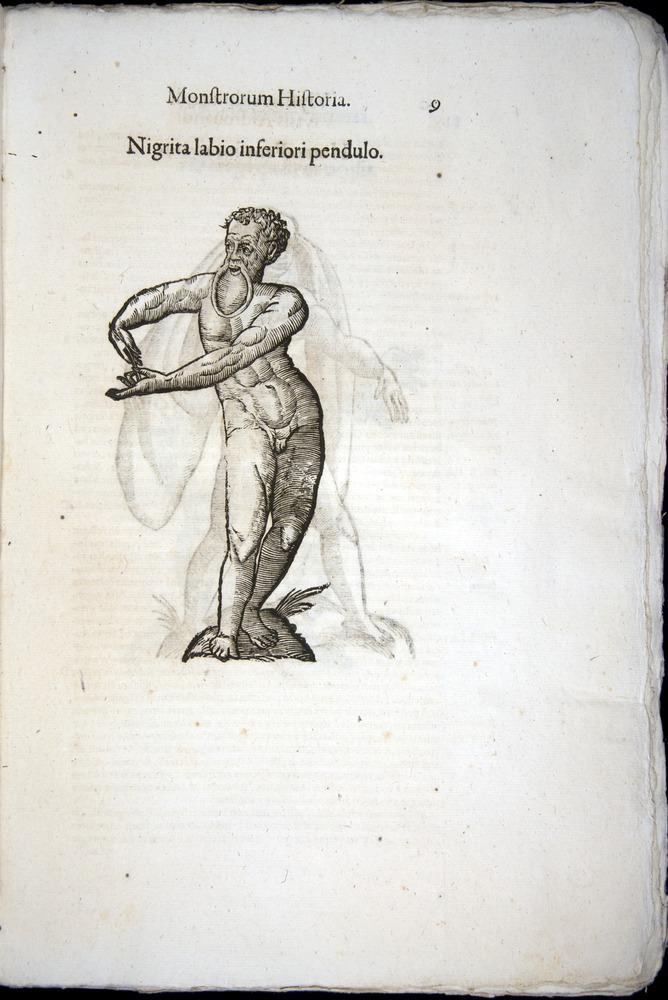 Image of Aldrovandi-1570-0009