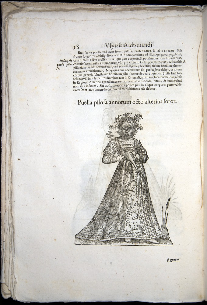Image of Aldrovandi-1570-0018