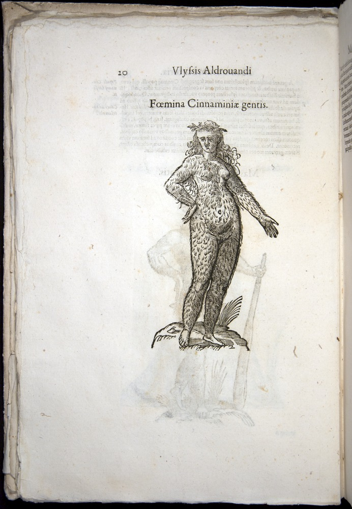 Image of Aldrovandi-1570-0020