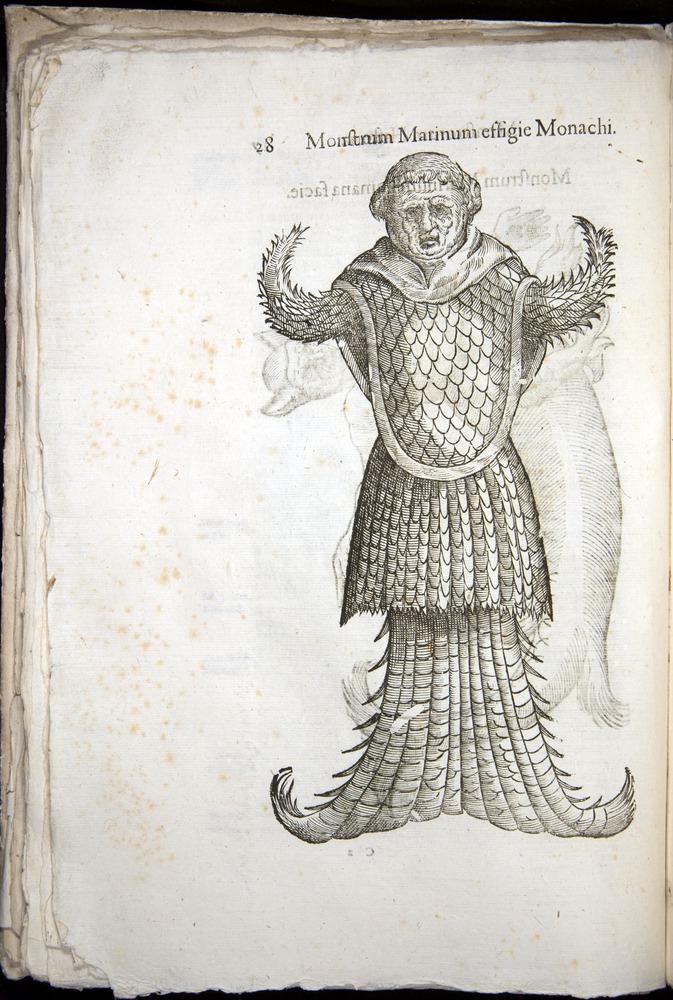 Image of Aldrovandi-1570-0028