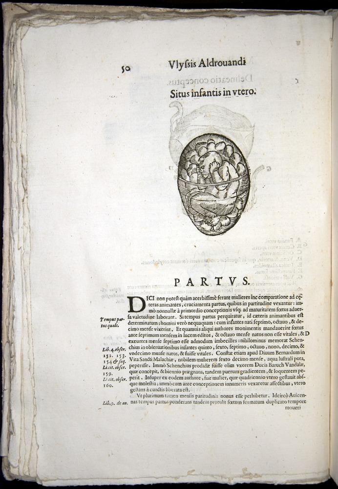 Image of Aldrovandi-1570-0050