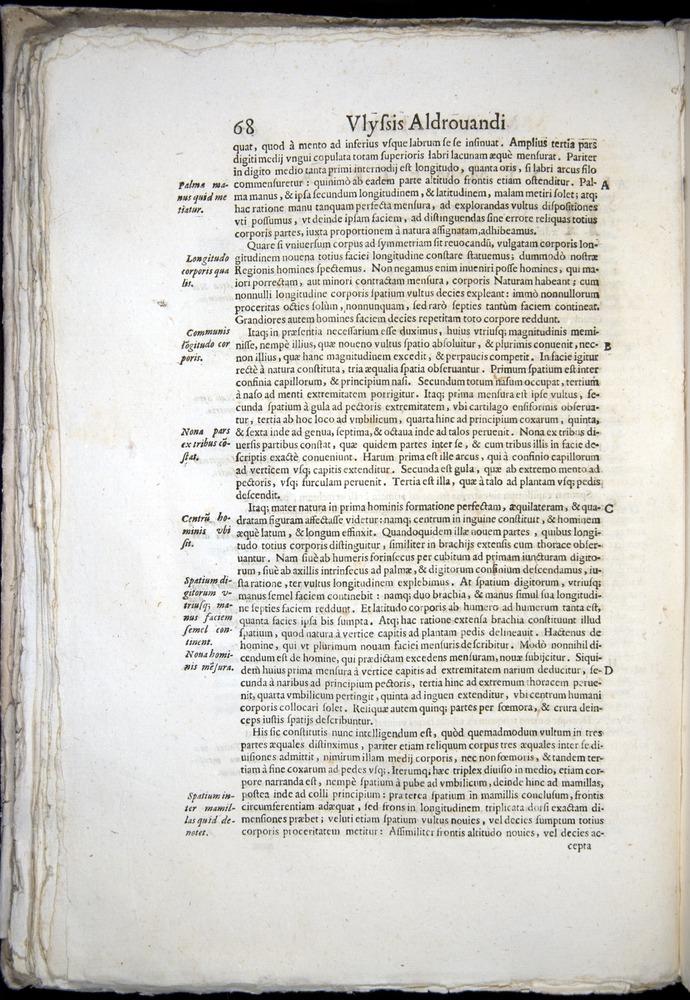 Image of Aldrovandi-1570-0068