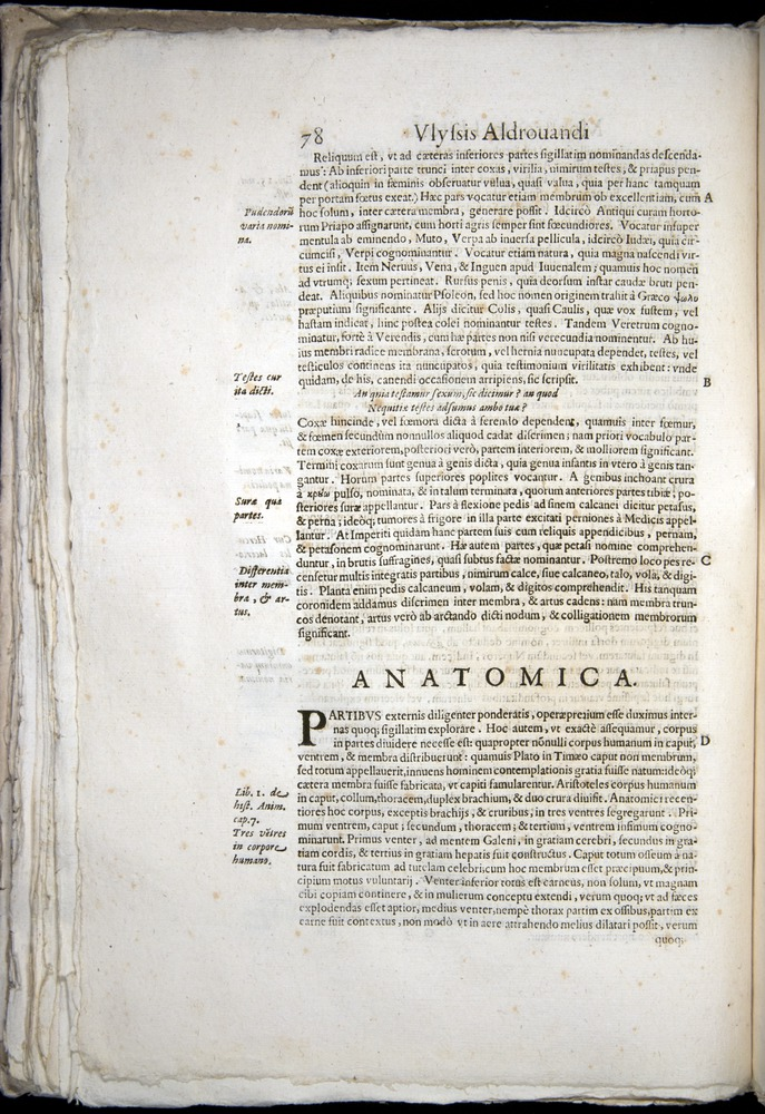 Image of Aldrovandi-1570-0078