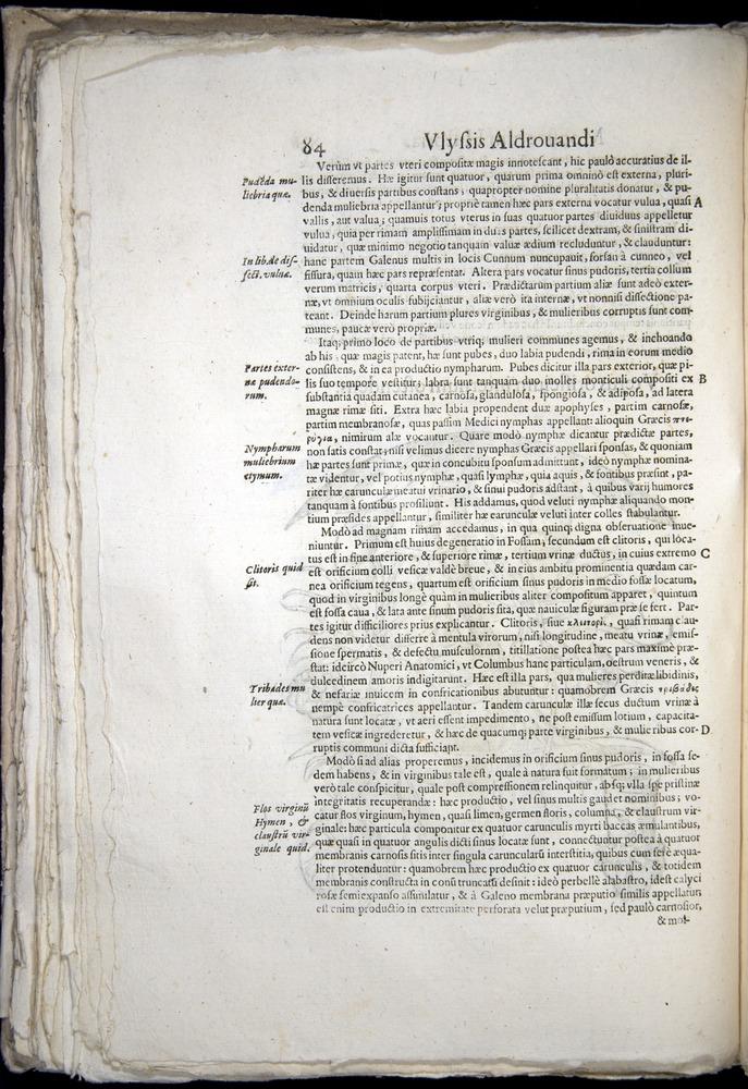 Image of Aldrovandi-1570-0084