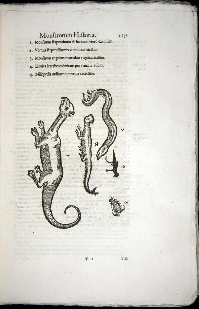 Image of Aldrovandi-1570-0219