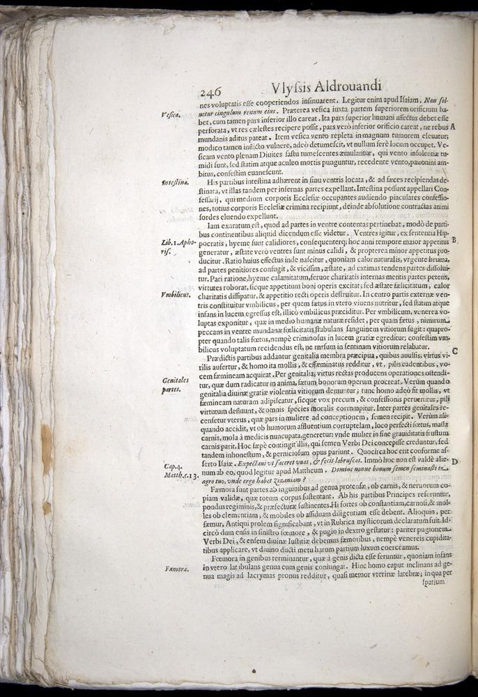 Image of Aldrovandi-1570-0246
