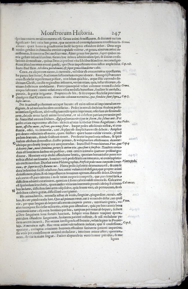Image of Aldrovandi-1570-0247