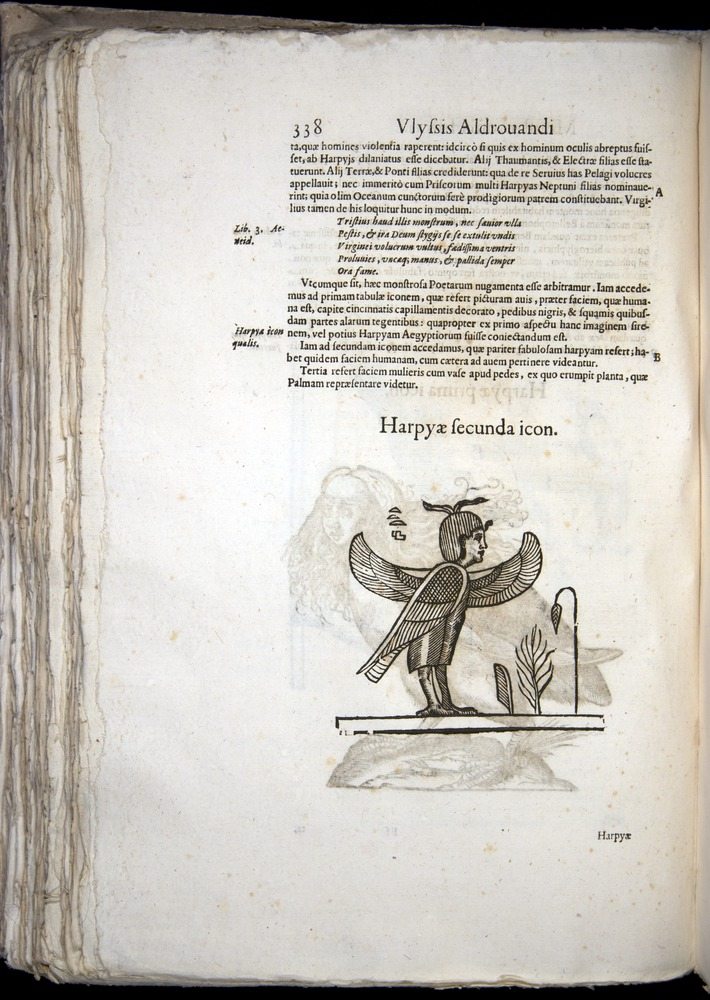 Image of Aldrovandi-1570-0338
