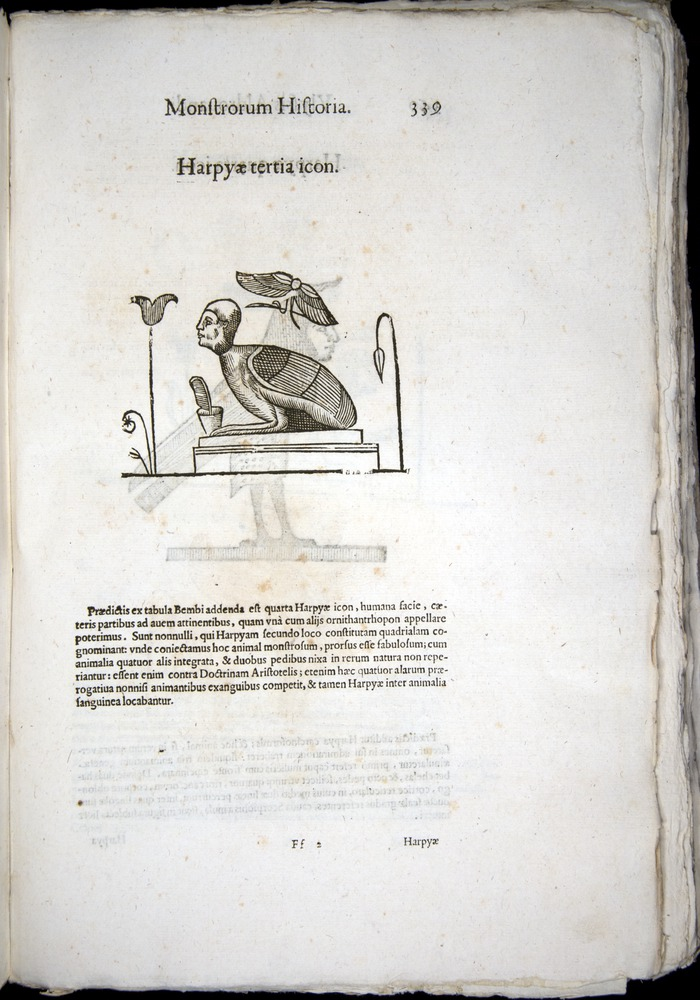Image of Aldrovandi-1570-0339