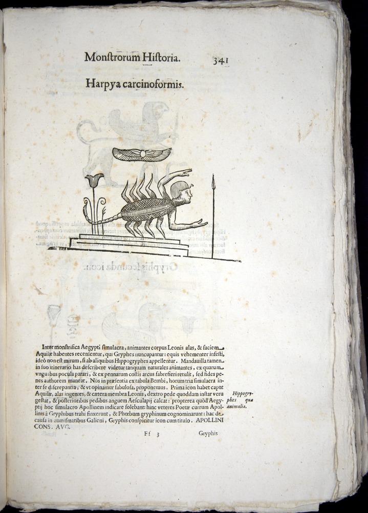 Image of Aldrovandi-1570-0341