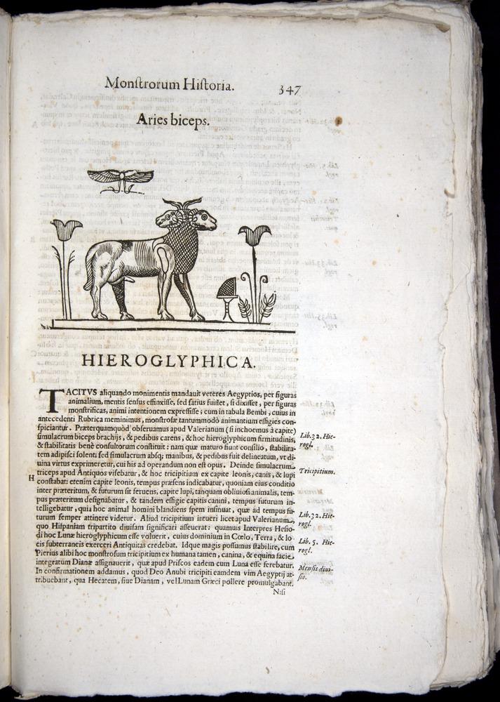Image of Aldrovandi-1570-0347