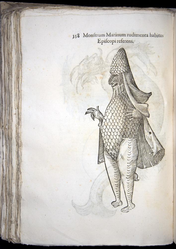 Image of Aldrovandi-1570-0358