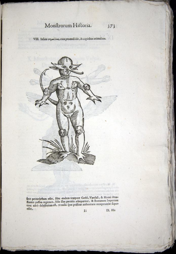 Image of Aldrovandi-1570-0373