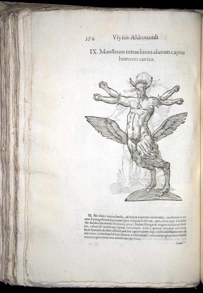 Image of Aldrovandi-1570-0374