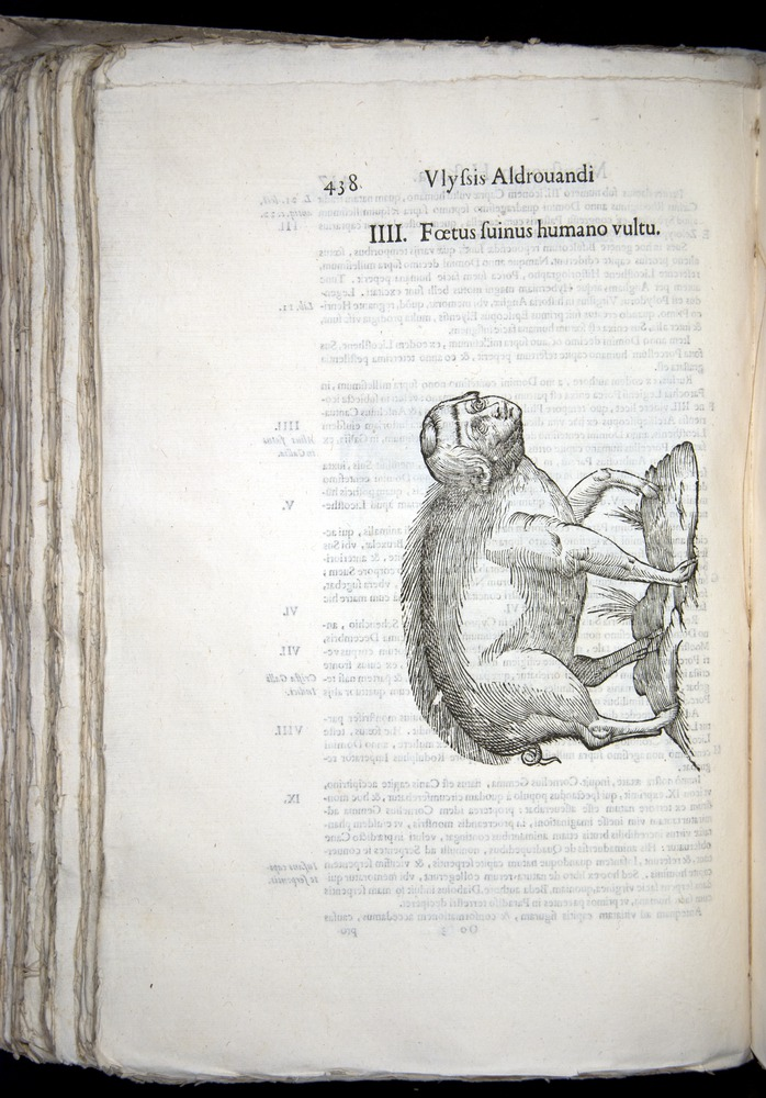 Image of Aldrovandi-1570-0438