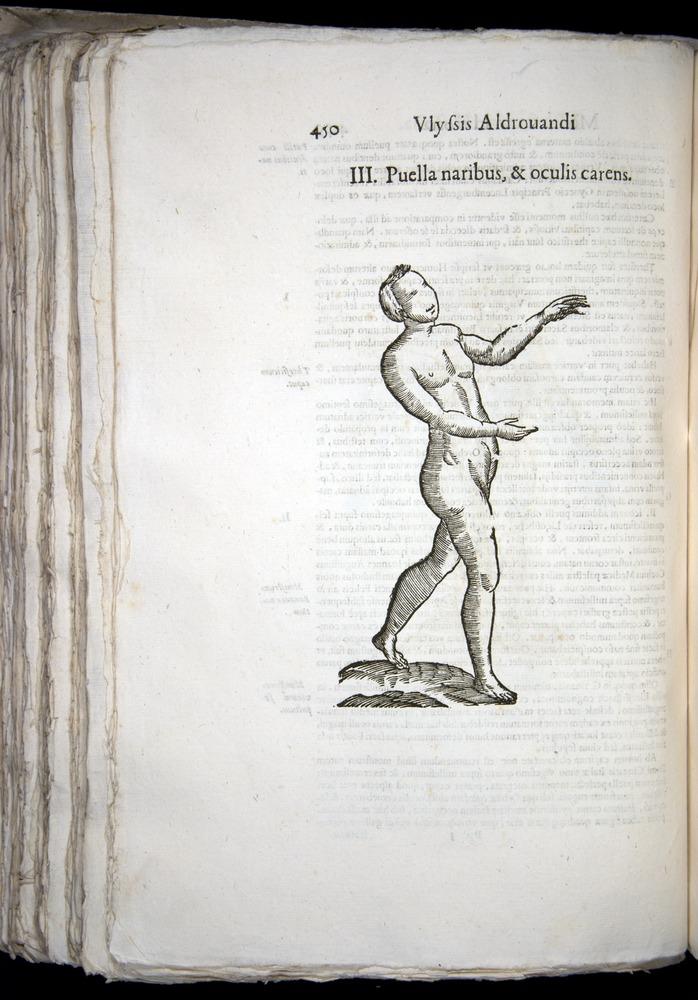 Image of Aldrovandi-1570-0450