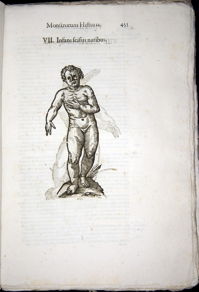 Image of Aldrovandi-1570-0455