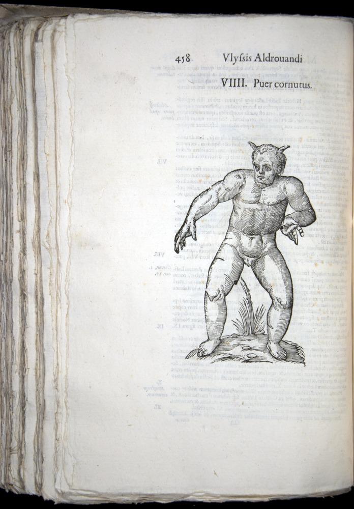 Image of Aldrovandi-1570-0458