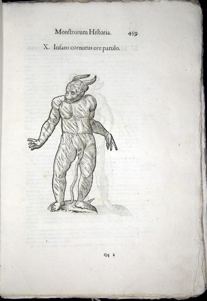 Image of Aldrovandi-1570-0459