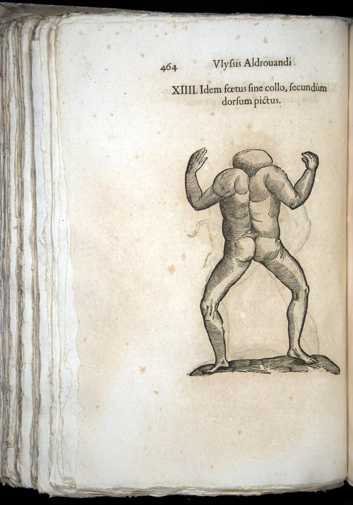 Image of Aldrovandi-1570-0464