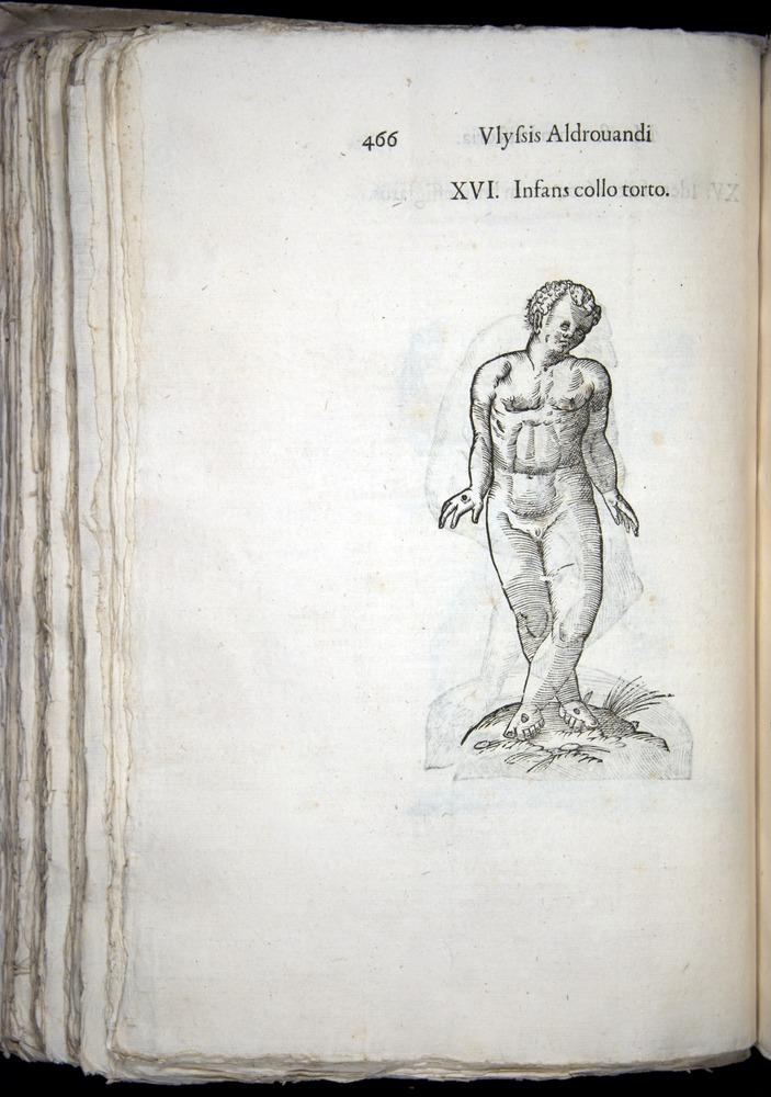 Image of Aldrovandi-1570-0466