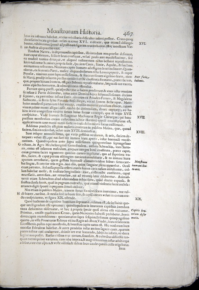 Image of Aldrovandi-1570-0467